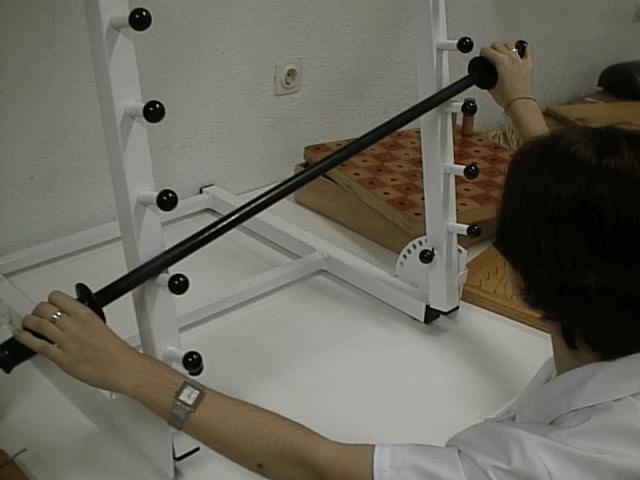esclerosis multiple mas ejercicios